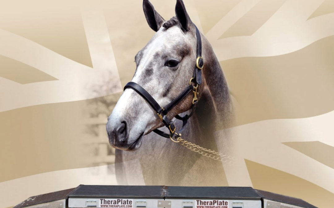 Bolesworth Golden Ticket Prize, Win a horse and a TheraPlate!