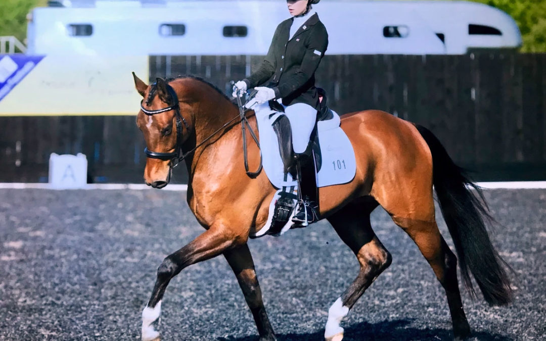 Introducing Dressage Star Victoria Maw