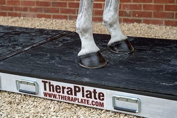 TheraPlate K21 Large Unit