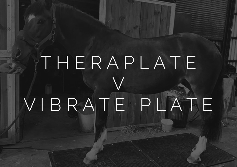 So you're thinking about getting a TheraPlate?